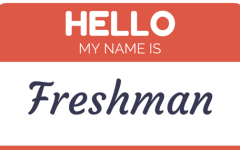 EDITORIAL: Why You Ought To Work In Freshman Year