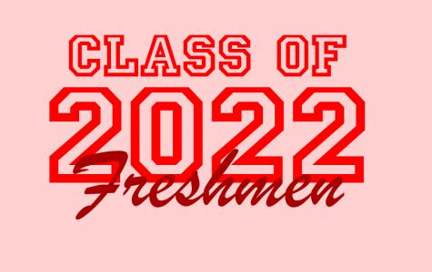BotC: Freshmen Profile