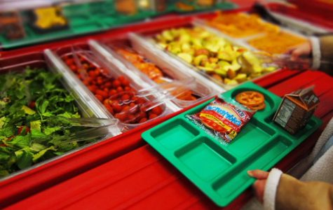 A Litterless Lunch: The Guide to Taking Sensible and Necessary Steps to Make Your School Lunch Sustainable