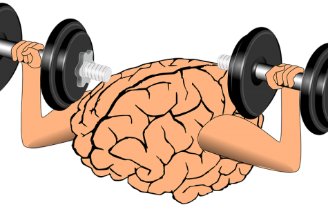 The Effects of Exercising on The Human Brain