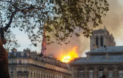 Notre Dame on Fire: the tragic loss of art, history, and culture