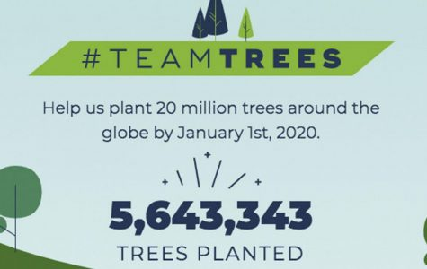 20 Million Trees Before 2020