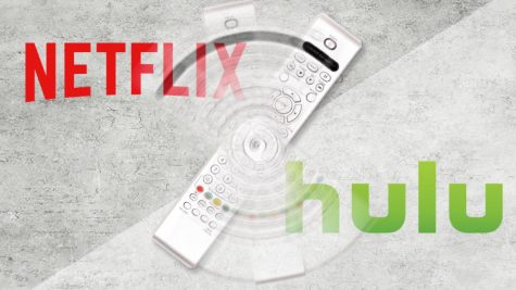 """Netflix vs. Hulu"" -- which is right if you have to choose one?"