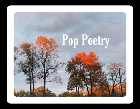 Pop Poetry: When I Am Alone